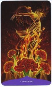 flowercarnation-181x300
